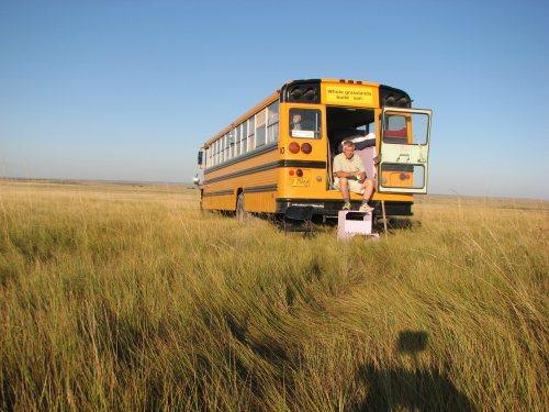 school bus in grassland