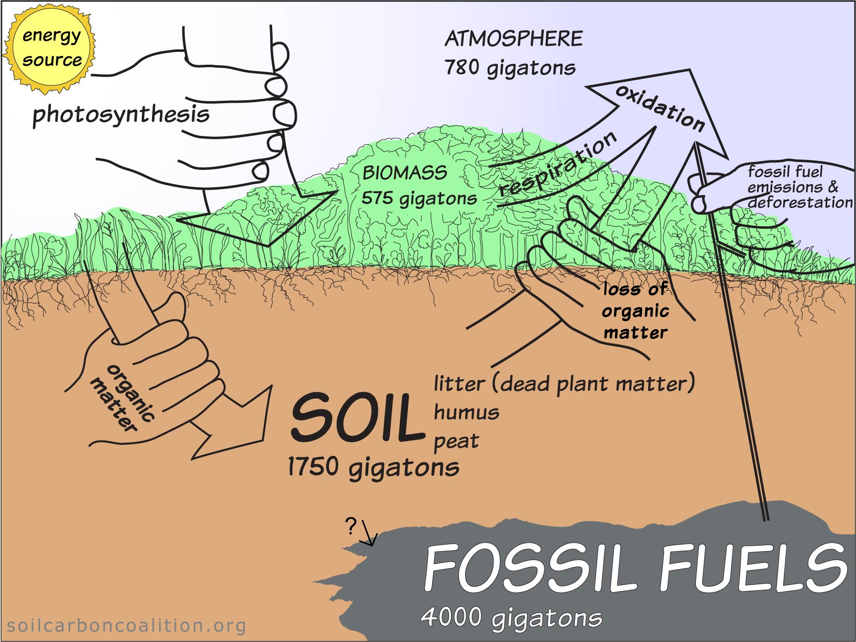 Turning air into dirt using atmospheric carbon and solar energy to the main flows of the terrestrial carbon cycle showing human influence a gigaton is a billion metric tons solar energy drives the cycle ccuart Gallery